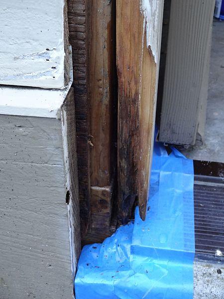 Dry Rot Repair In Elk Grove Ca 916 472 0507